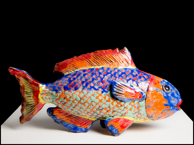 Parrot fish number 1