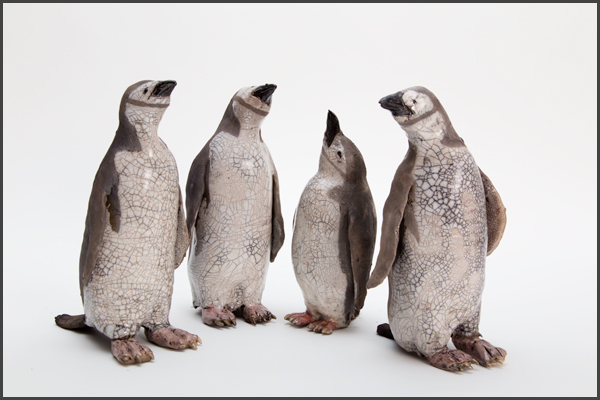 penguin group 4
