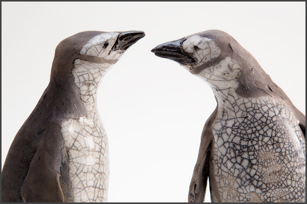 chinstrap penguin heads